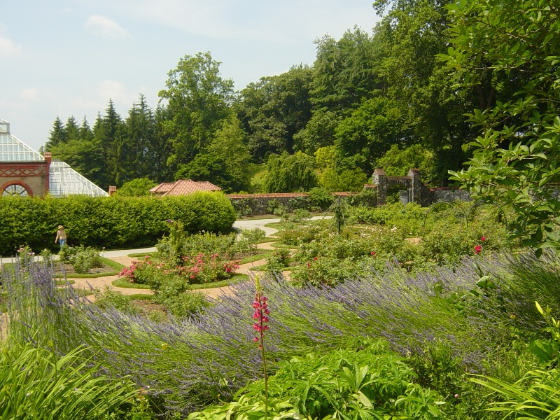 Walled Garden and Backdrop