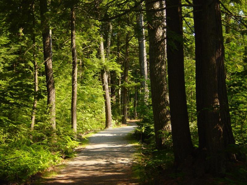 Wolfeboro Bike Path